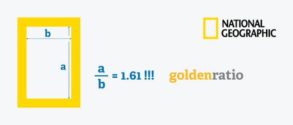 złoty podział logo