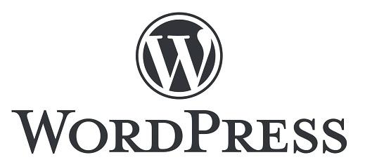 strony www dla firm wordpress