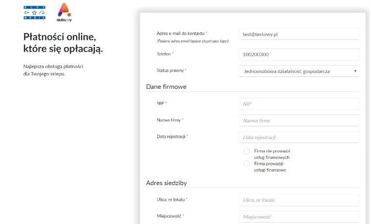 jaki system płatności online wybrać