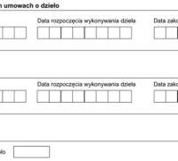 II. Dane wykonawcy UoD